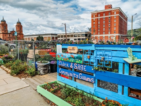How cute is this community garden! I wish there was something like this in CLT!